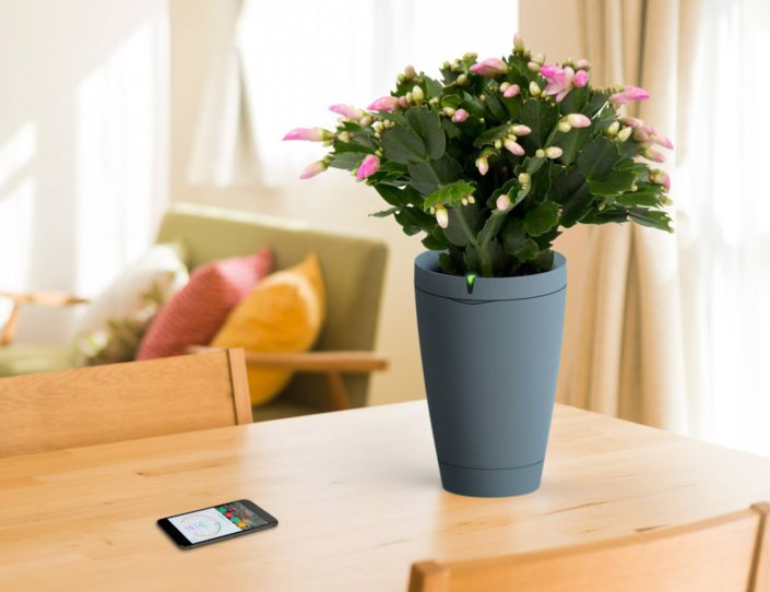 Parrot-Pot-Connected-Flower-Pot-02